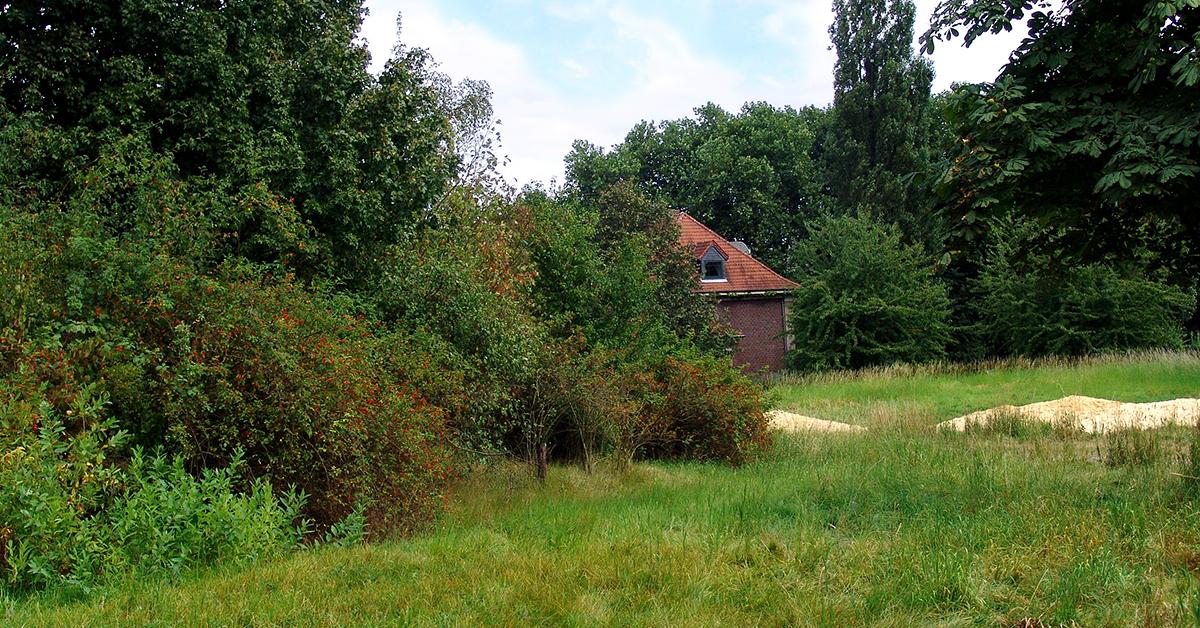Die erste eröffnete Naturfläche in Herne liegt direkt neben der Biologischen Station. Foto: Wildnis für Kinder