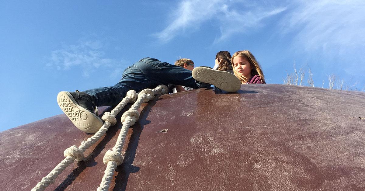 Auf Gulliver klettern unsere Kinder in luftigen Höhen umher. Foto: Schilling