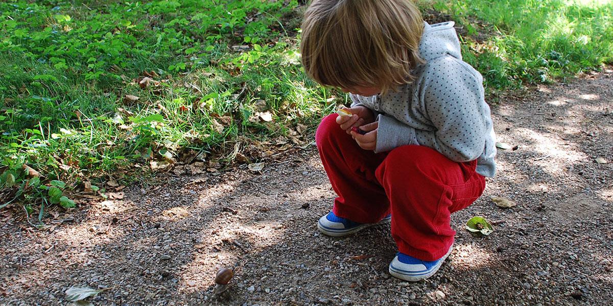 Kind beobachtet Schnecke