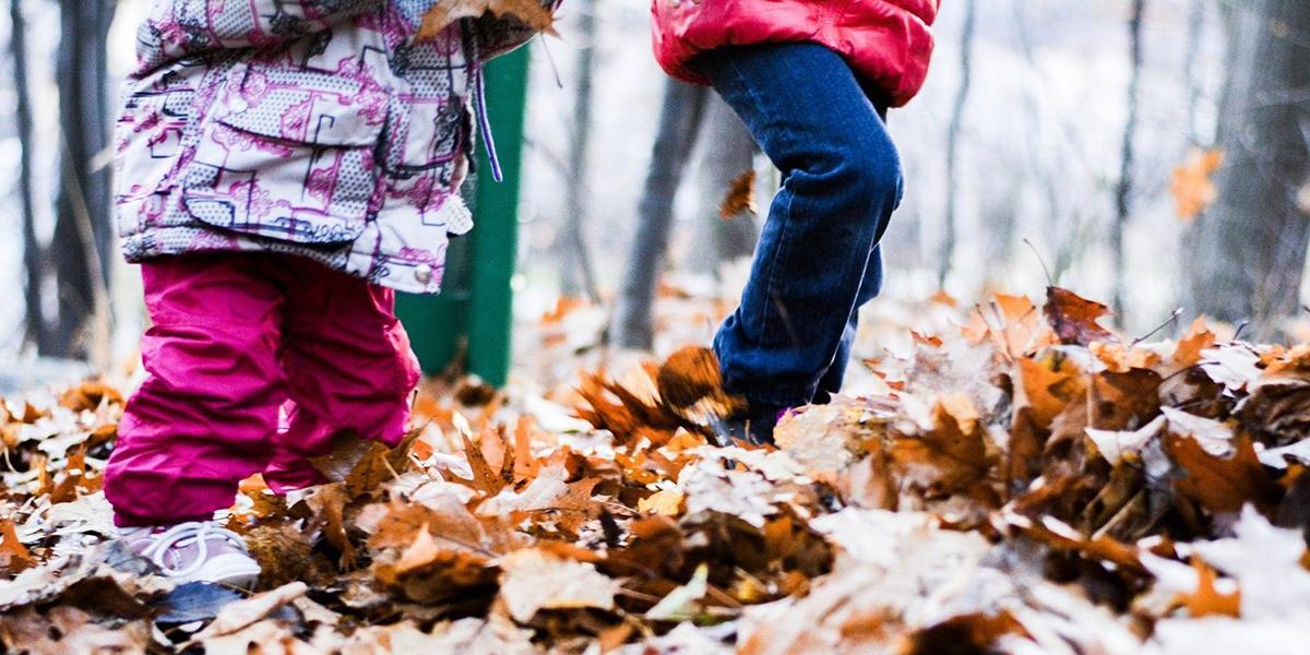draußen spielen im Wald