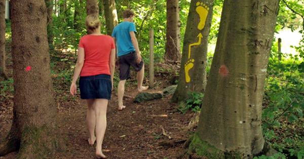 Die gelben Fuß-Wegweiser führen die Besucher den Barfußpfad entlang. Foto: Lorenz Kerscher